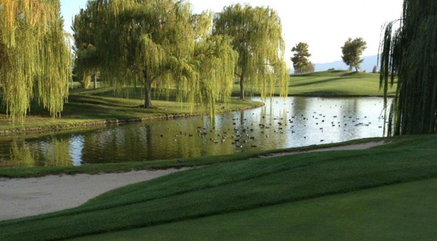 Mountain-Falls-Golf-Course-7_e